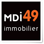 49 immobilier